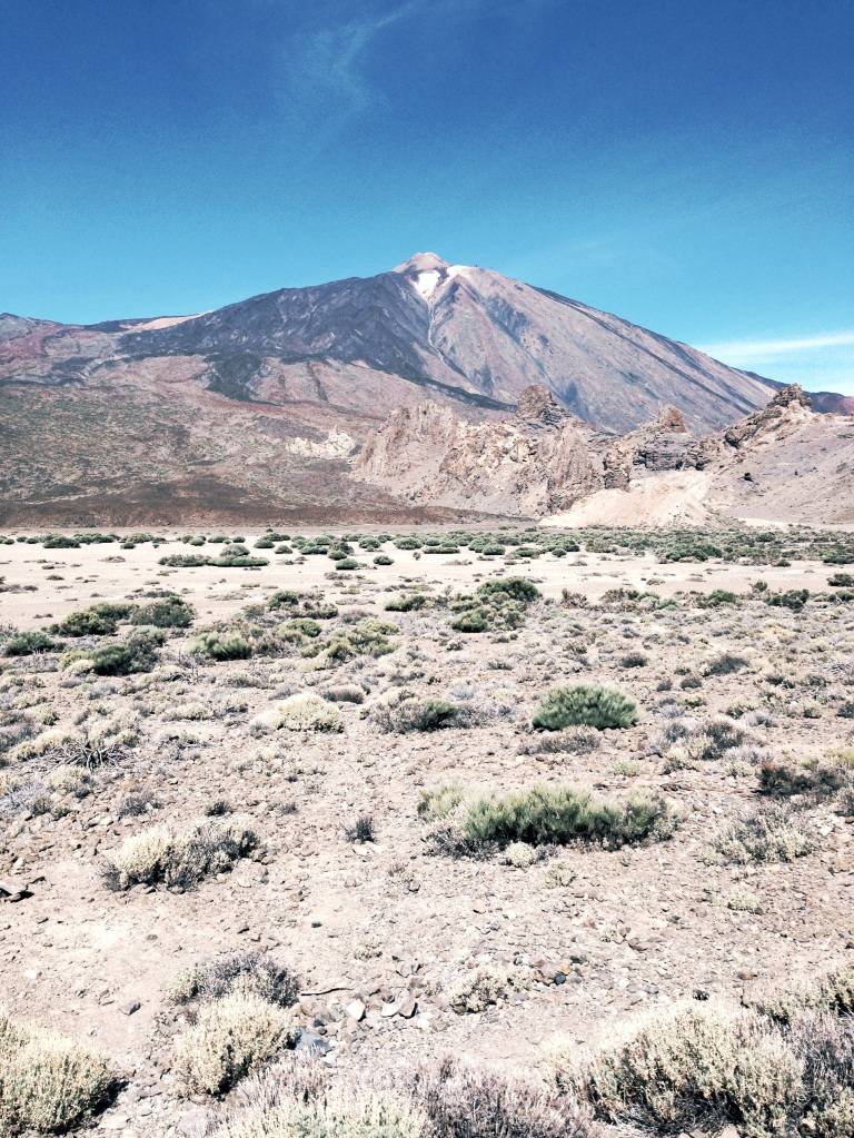 Volcanic ground (Tenerife, Canary Islands)